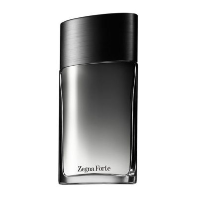 Zegna Forte edt 100ml